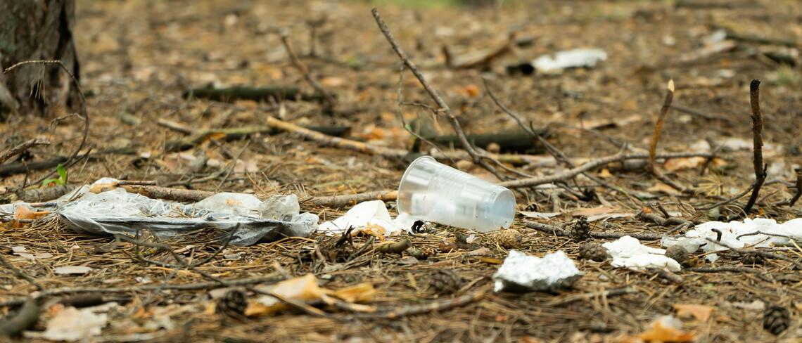 Plastikmüll auf dem Waldboden