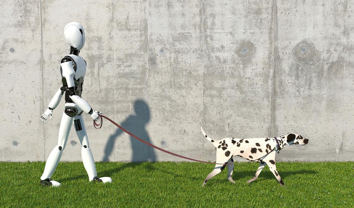 Werden Roboter in einer fernen Zukunft auch diese Arbeit übernehmen können? Bild: Julia Garan, Getty Images