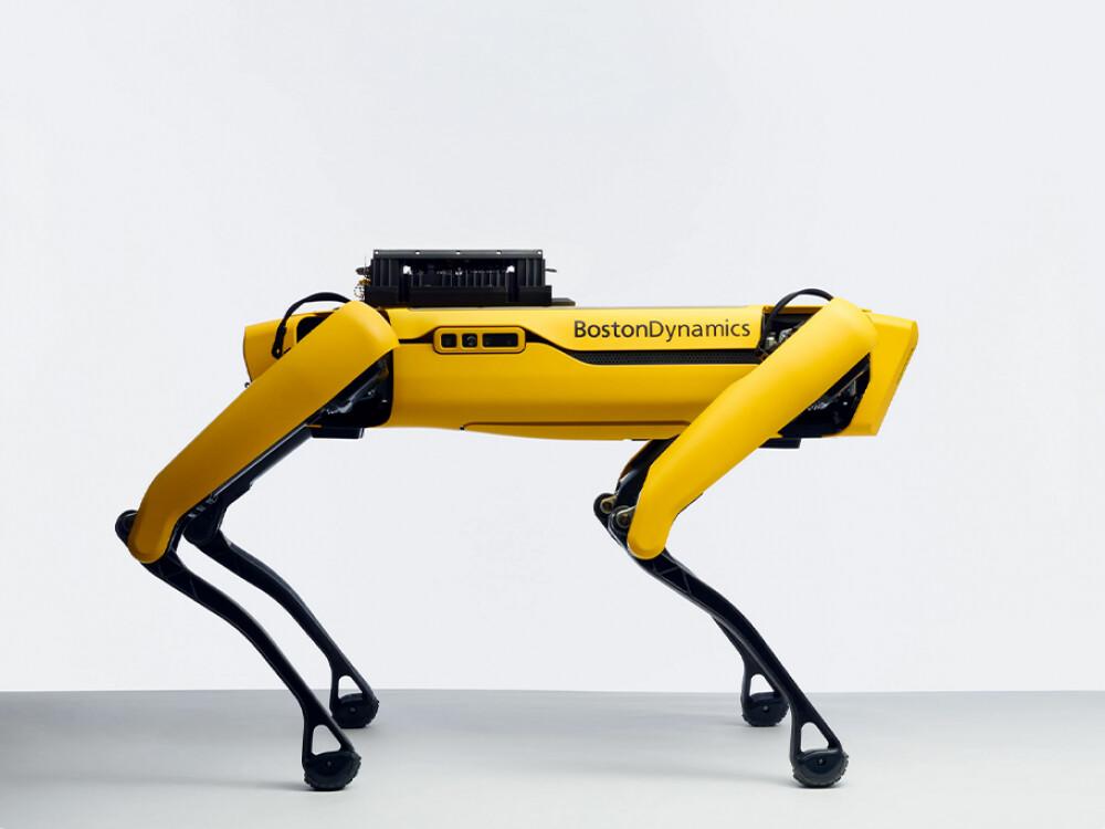 Der Roboterhund Spot von Boston Dynamics