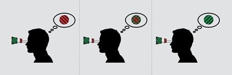 Illustration zum Binocular Rivalry Test