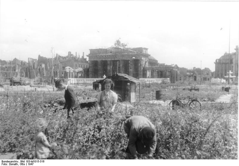Bundesarchiv_Bild_183-M1015-316,_Berlin,_Parzellen_im_Tiergarten