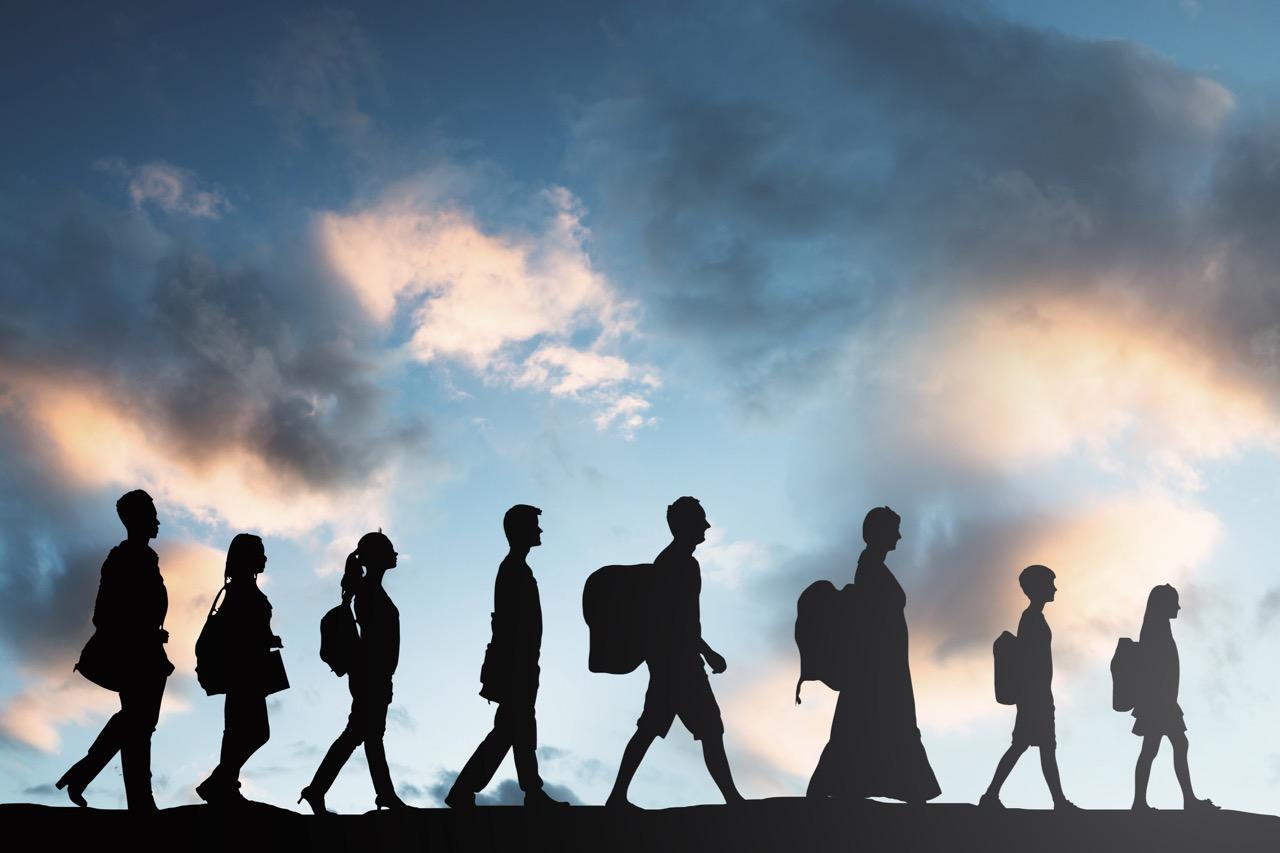 Migration (2)